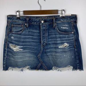 NWT American Eagle Hi-Rise Festival Mini Skirt